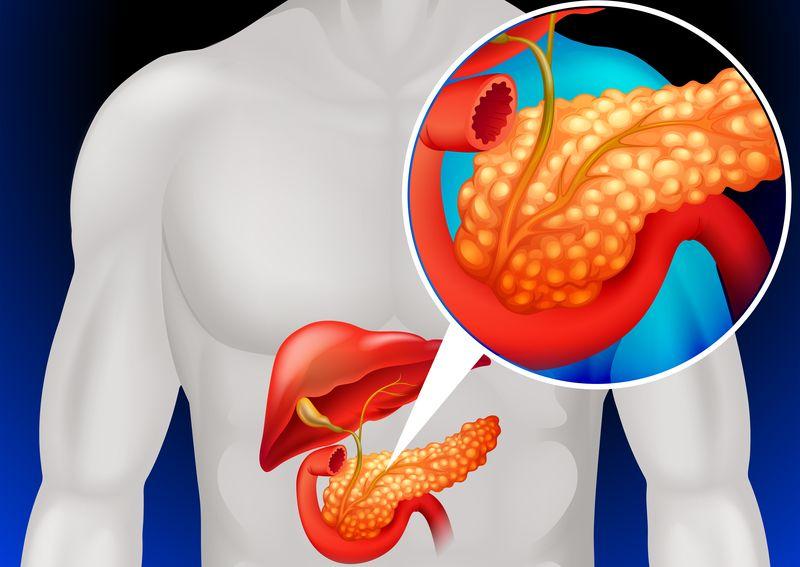 a65047bf9fa7ce7e1968f4661b058d0e - Народный рецепт лечения поджелудочной железы